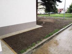Brigáda - výsadba trávnika okolo kultúrneho domu